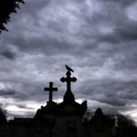 innocence-en-danger-tombe-1024x684